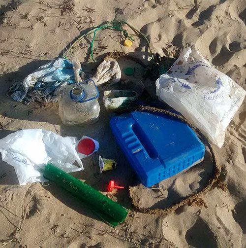 Recogida de plásticos de la playa