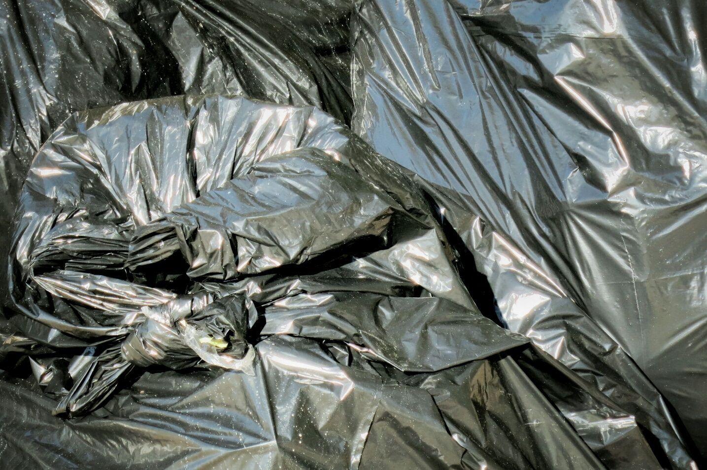 5be3987fe Alternativas a las bolsas de basura - Vivir sin plástico
